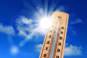 Gefahren bei der Hitzewelle