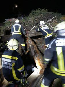 Feuerwehrübung: Menschenrettung aus Holzhaufen